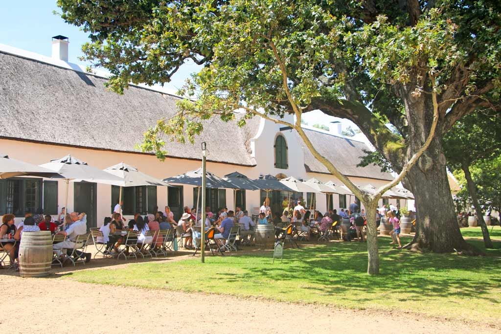 Image: Groot Constantia wine tasting in Cape Town