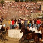 S'Ardia horse race in Sedilo, running for faith and tradition