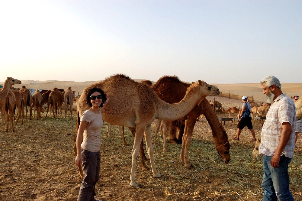 In the desert, discovering Abu Dhabi roots