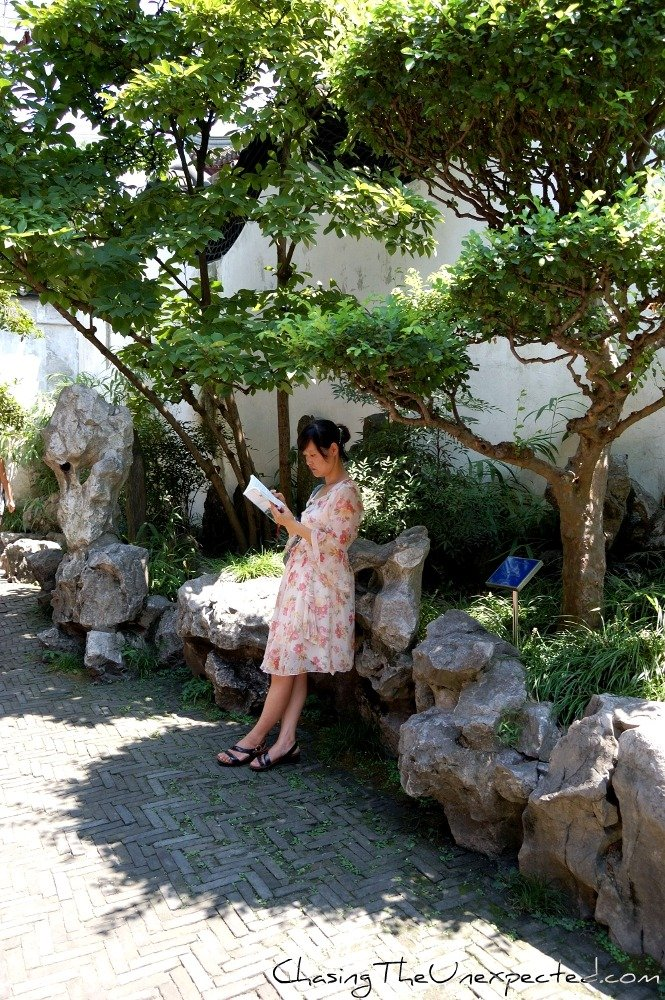 Image: Woman reading in Shanghai