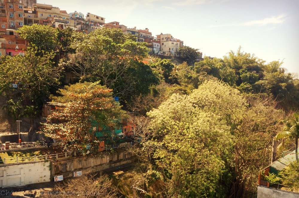 A trip, a photo – In Rio, the trendy and the favela