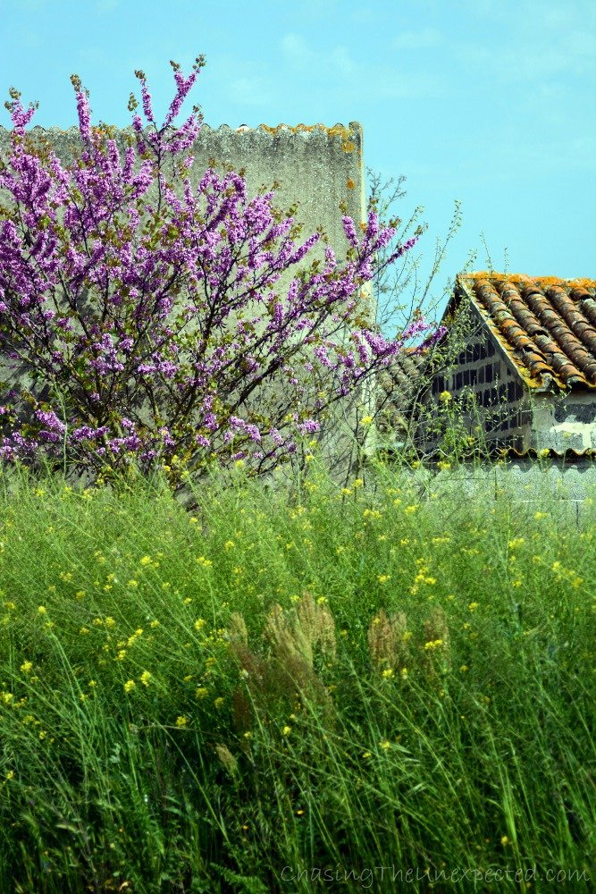 In the outskirts, near the countryside, nature and old houses.