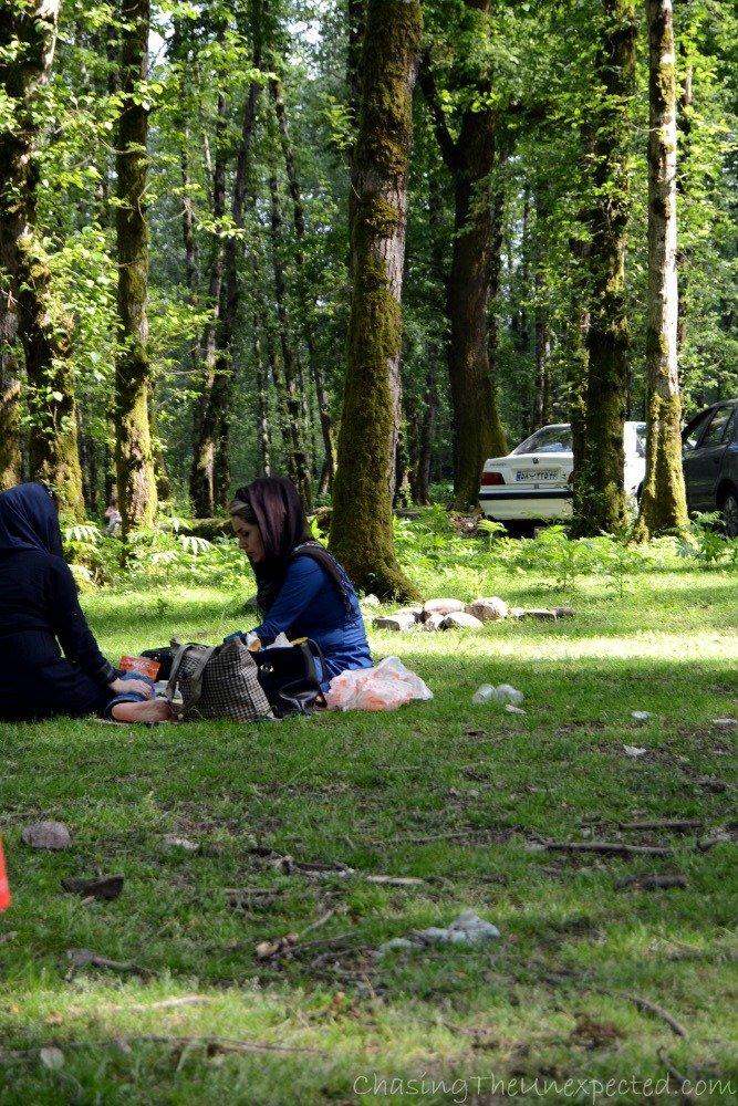 iranian picnic4