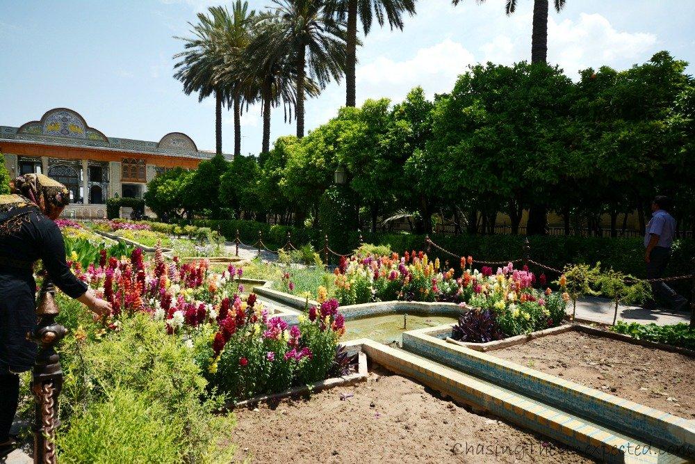 The rich vegetation of Narenjestan Garden in Shiraz