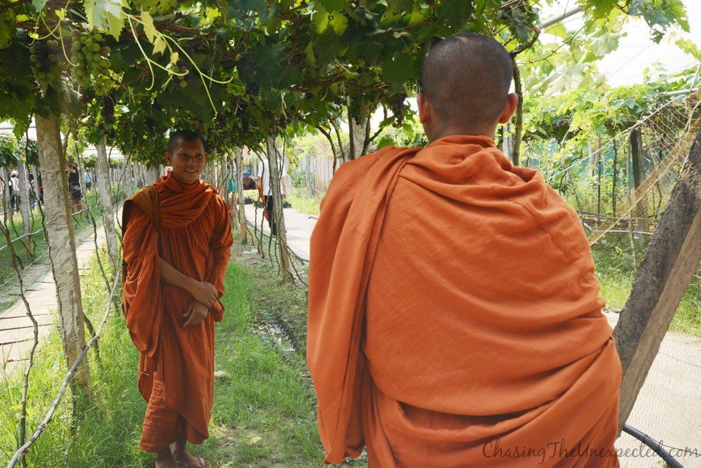 top things to do in Battambang | what to do in battambang | what to see in battambang | places to visit in battambang