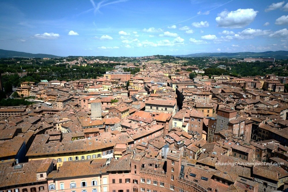 Day trip from Florence to Siena