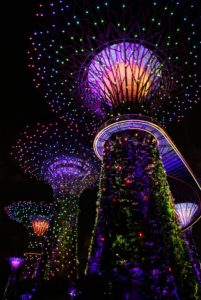 Top 10 reasons to visit Singapore