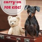 Best carry-on for kids
