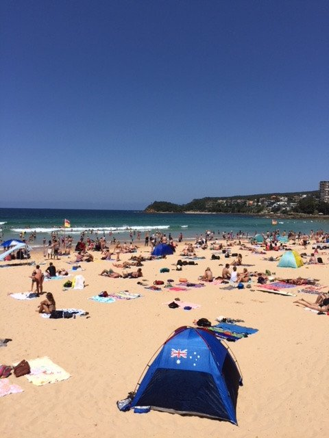 The local beaches are great places to visit in Sydney