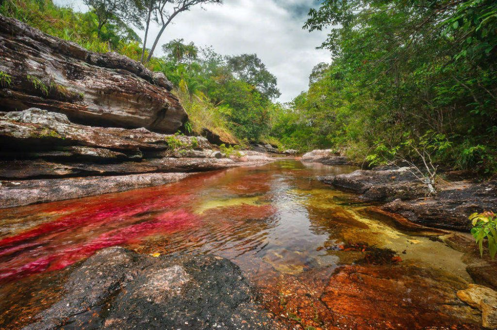 Caño Cristales top places to visit in colombia