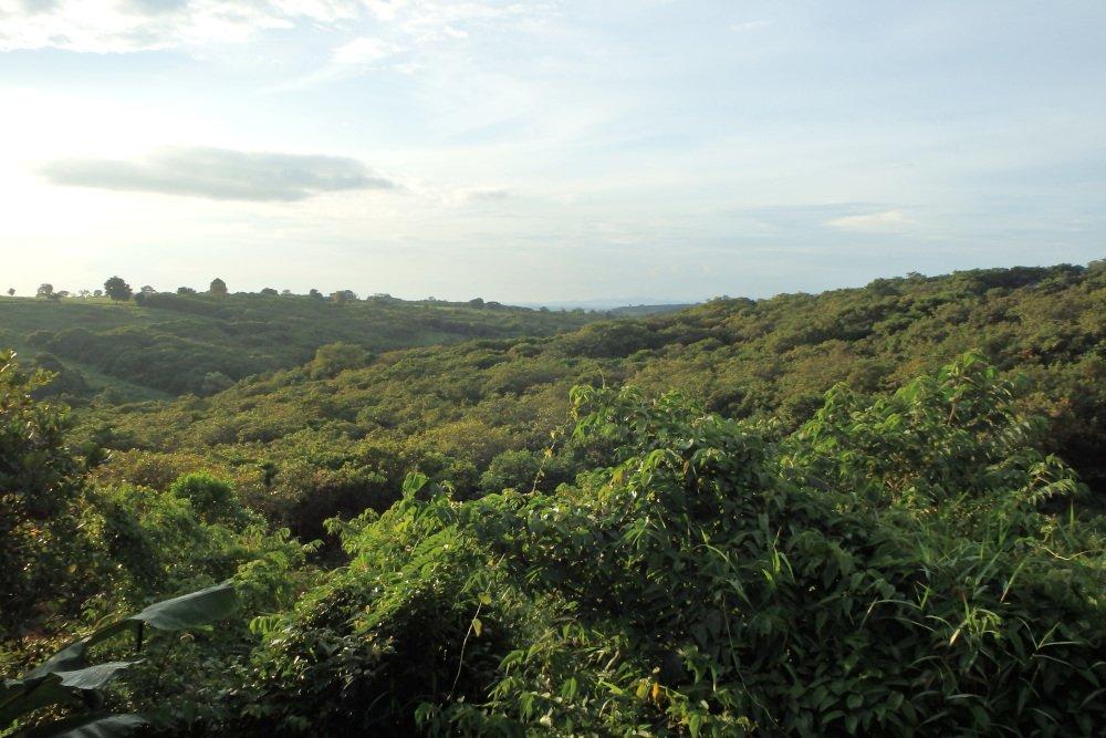 trekking Mondulkiri Cambodia
