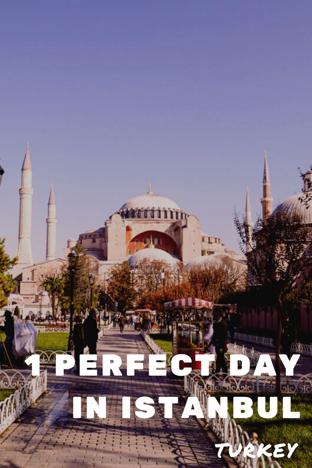 "Pinterest image: Image of Istanbul with caption reading: ""1 perfect day in Istanbul, Turkey"""
