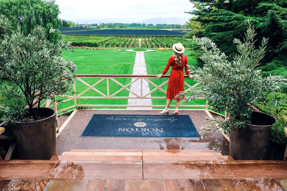 Image: Norton winery in Mendoza