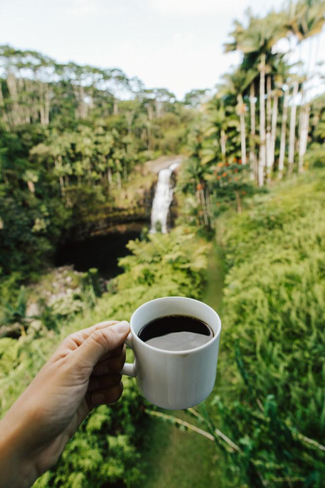 Image: Breakfast coffee in the Hawaii
