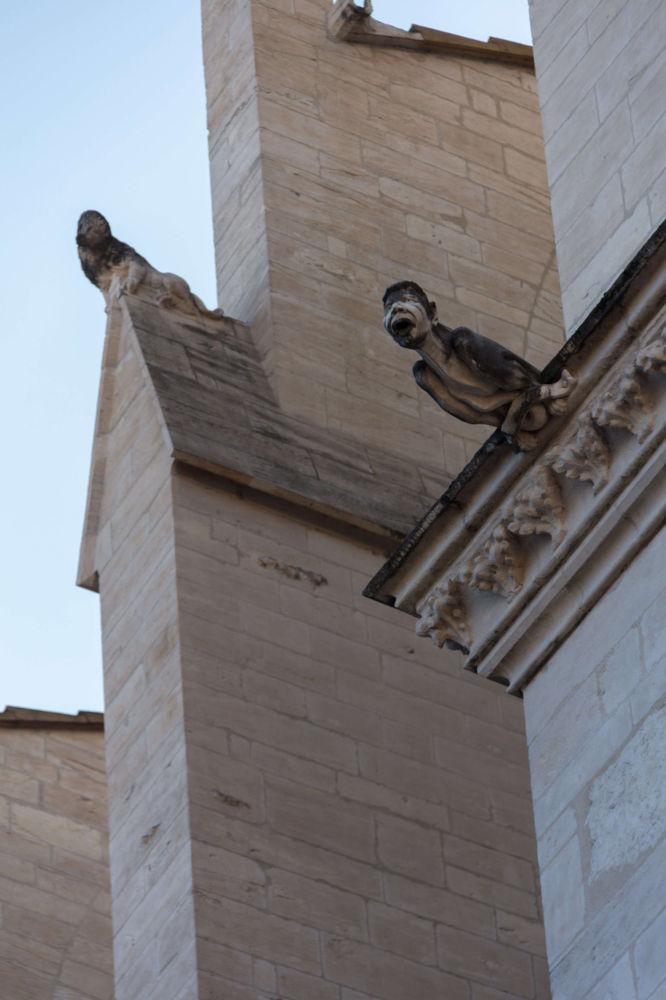 Image: Gargoyle from Cathédrale Saint-Jean-Baptiste de Lyon