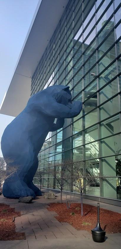 Image: Blu Bear in Denver