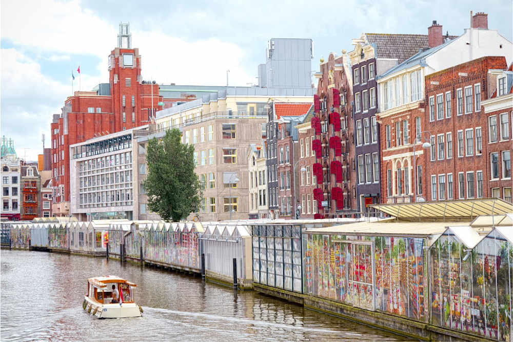Image: Bloemenmarkt to visit in 3 days in Amsterdam