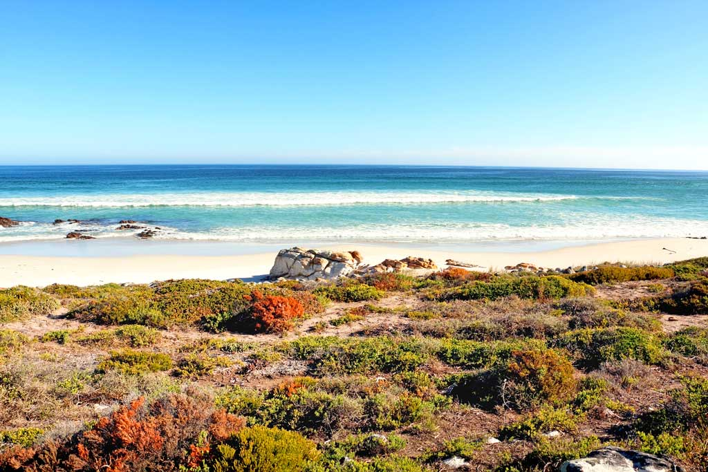 Image: Beach in Cape Town