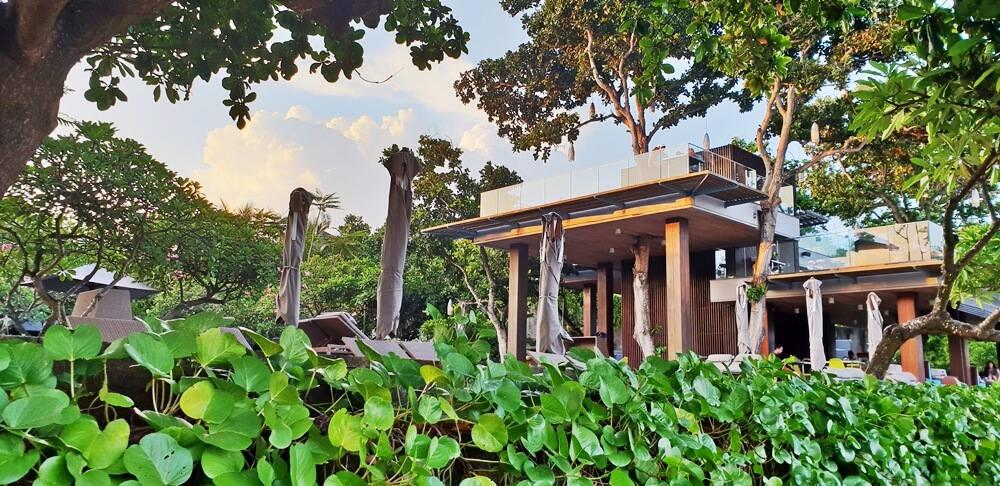Image: Tree Bar at Maya in Sanur